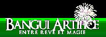Maison Bangui, Artificier professionnel et spécialiste du spectacle et des feux d'artifice à la Réunion | Animation Mariage artifice